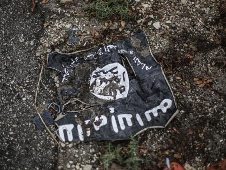 Ісламська держава не збивала йорданський військовий літак — США