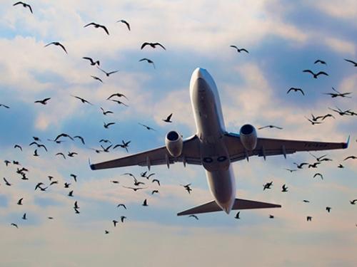 Державне управління справами уклало угоду з Державним авіаційним підприємством «Україна»
