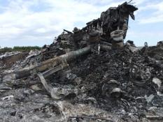 Нідерландські експерти хочуть продовжити пошукову місію на місці катастрофи «Боїнга» МН-17 у Донецькій області