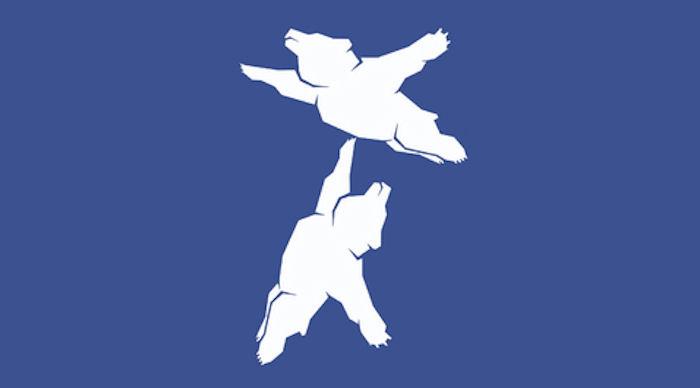 Хабаровский аэропорт признал, что медведи летают (ФОТО)