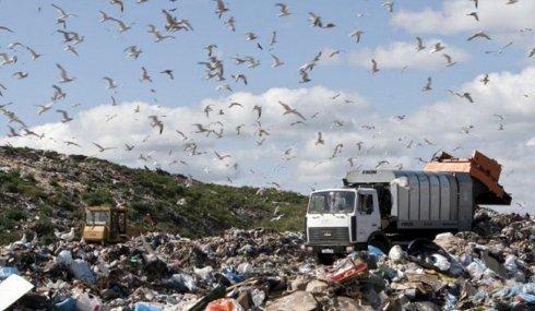 Поиском мусорных свалок займутся беспилотники