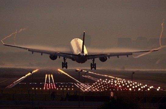 В Китае обеспечивать безопасность при взлете самолетов будут обезьяны