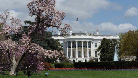 Беспилотник упал возле Белого дома, владельцу предъявлены обвинения