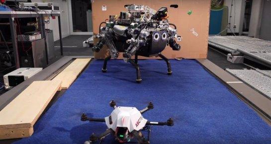 Видео дня: Дрон прокладывает маршрут для шагающего робота