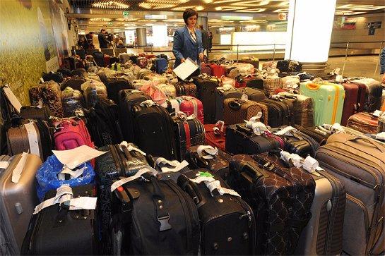 Аэропорт Внуково просит туристов из Египта скорее забирать свои чемоданы