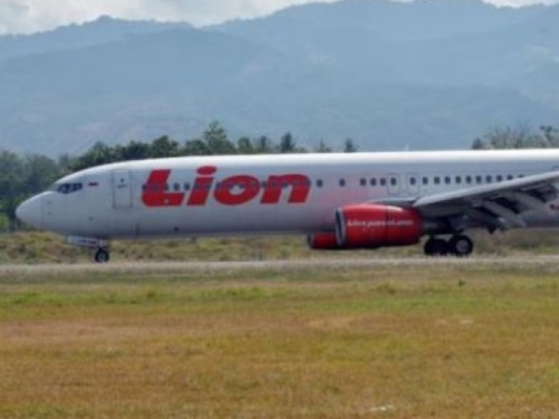 Boeing предупредила авиакомпании об опасности срыва самолетов 737 MAX в пике