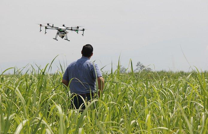 Беспилотники помогают повысить качество урожая