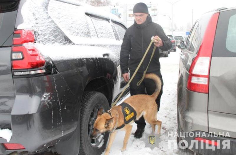Еще один аэропорт Украины начали патрулировать с собаками