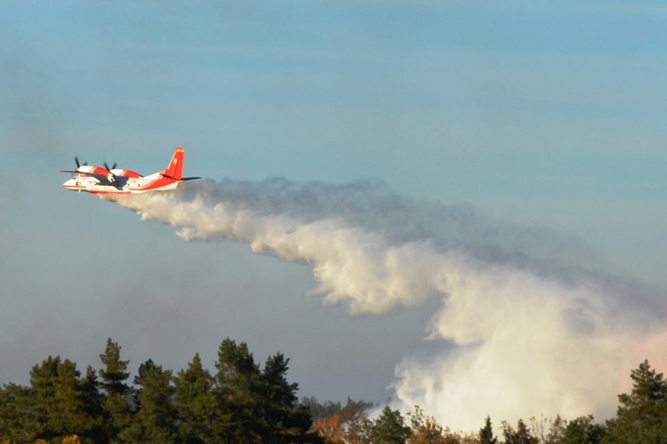 За сутки авиация сбросила 236 т воды на пожары в Чернобыльской зоне