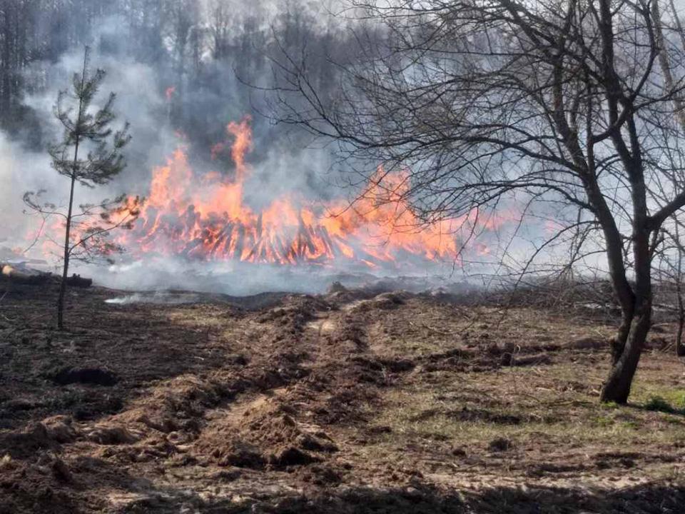 Пожар в Черниговской области тушили авиацией