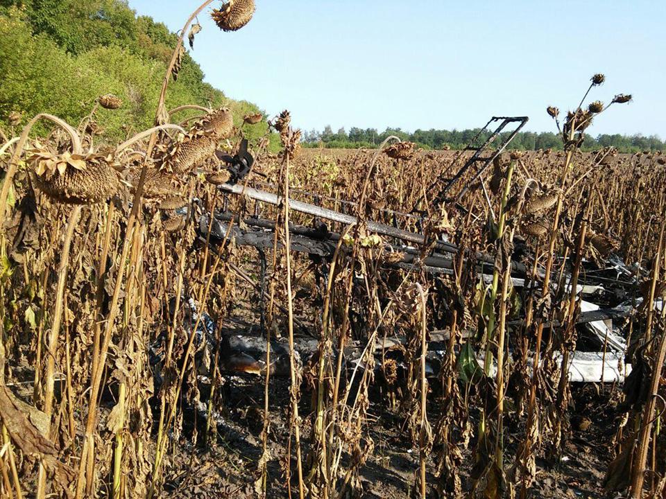 В Сумской области в результате падения легкомоторного самолета погиб пилот