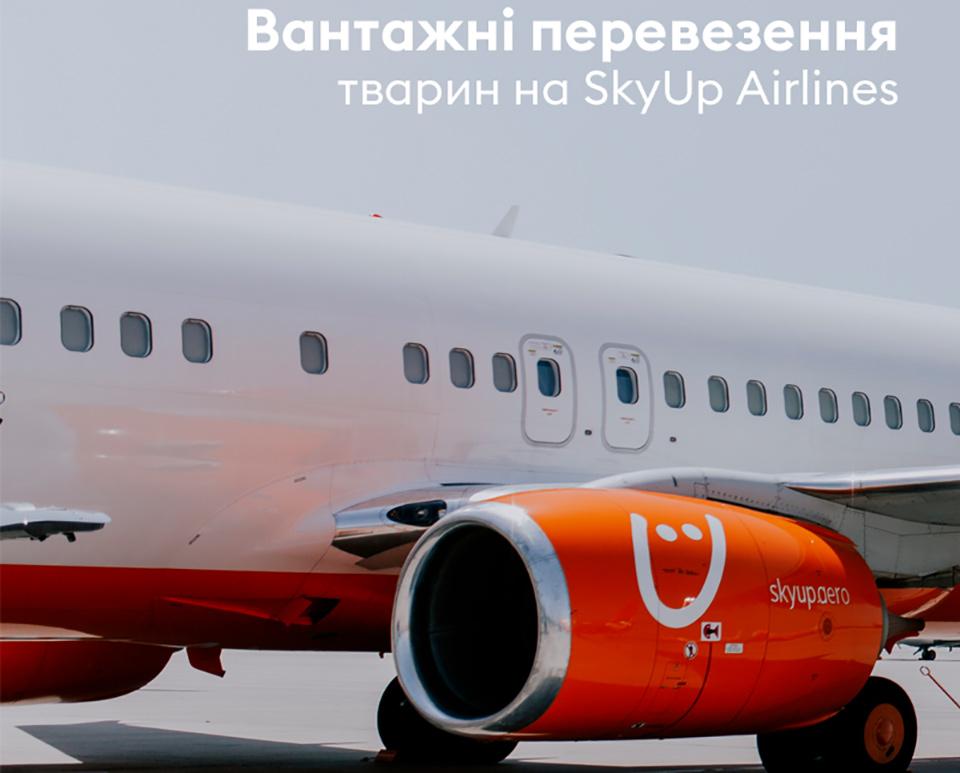 В SkyUp Airlines начали грузовые перевозки животных