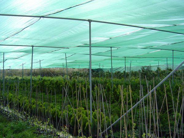 Затеняющая сетка для защиты растений