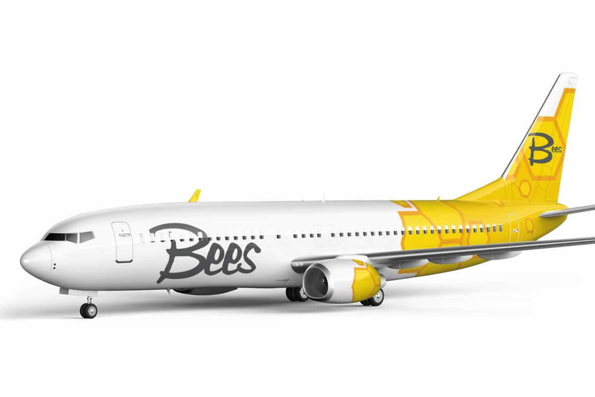 Bees Airline получила сертификат эксплуатанта