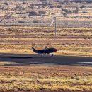 Беспилотный ведомый самолёт Loyal Wingman совершил первый полёт