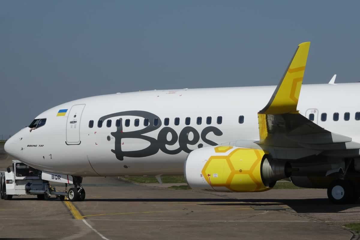 Еще один самолет Bees получил фирменную ливрею