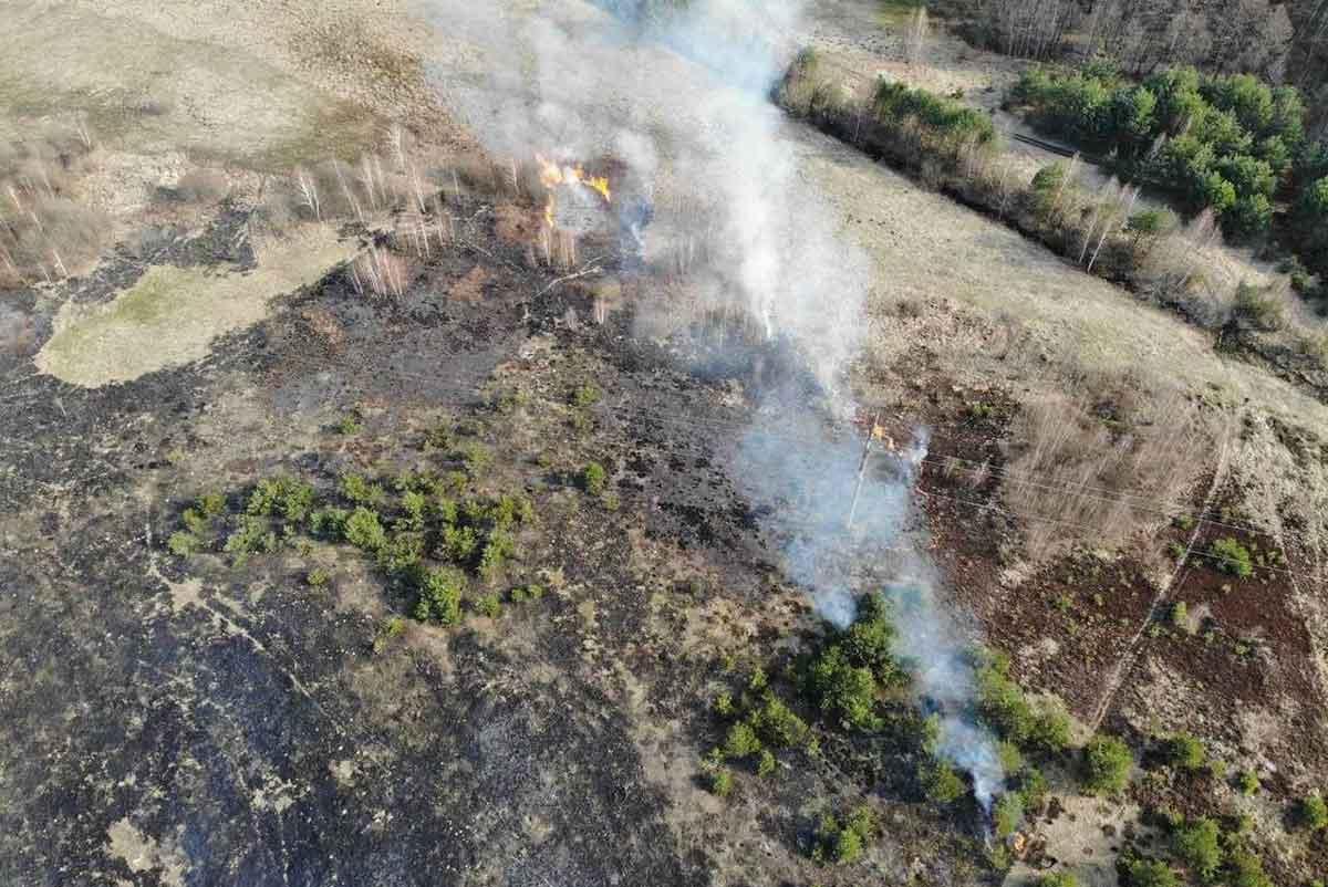 Квадрокоптеры выявляют поджоги